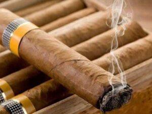 فرق توتون و تنباکو