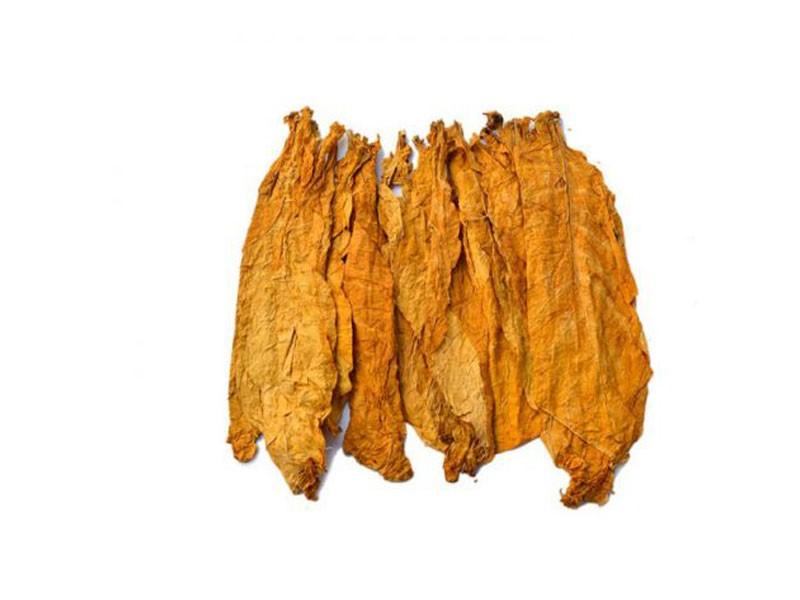 معرفی انواع مختلف تنباکو